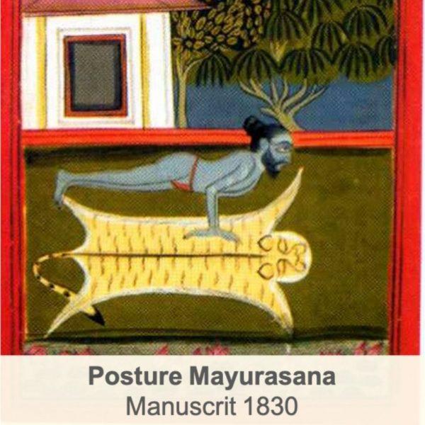 découvertes récentes sur le yoga posture de hatha yoga