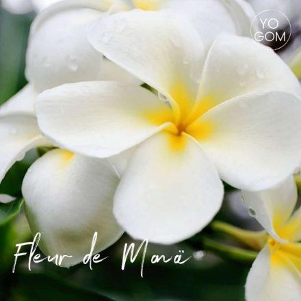 Spray nettoyant tapis de yoga senteur Fleur de Monoï