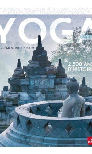Livre deyoga: Yoga, 2500 ans d'histoires