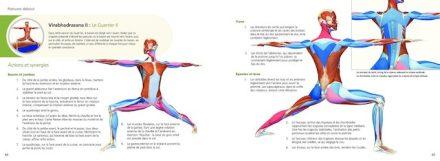 anatomie du yoga extrait 2