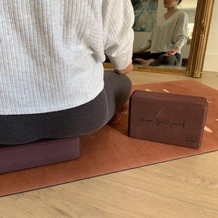 focus sur deux briques de yoga yogom